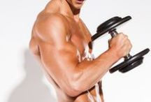 Muscle Building Workouts and Nutrition