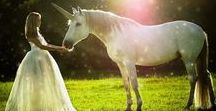Unicorn Photo Shoot / There is something so magical about a unicorn! This board will help you imagine a Unicorn Photo Shoot with your horse or pony. Get ideas for costumes, poses, themes, where to find a unicorn horn, how to decorate your horse, and use props and accessories.