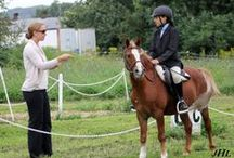Dressage Clinics & Training with Sandra Beaulieu / Some lovely pictures of my students in clinics and horses during training sessions. It is my goal to make every lesson a positive experience for both horse and rider. I focus on balance, harmony, flow of energy and help riders learn the dressage movements, improve their dressage tests and have some fun! I have also included some of my blog posts that might help others improve their riding. www.beginthedance.com