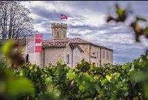 Château Ambe Tour Pourret / visite du vignoble et des chais au Château Ambe Tour Pourret à Saint Emilion Bordeaux Réservez avec winetourbooking.com