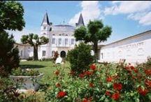 Château Caillou / Visite du vignoble et des chais au Château Caillou à Sauternes Bordeaux Réservez avec winetourbooking.com