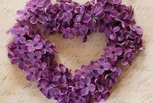 CORAZÓN, heart, corazones, hearts,....t