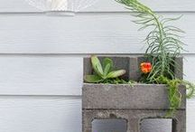 Home Decor & DIY - Hometalk / Everything home decor and DIY! Here you'll find DIY home decor ideas, curb appeal plans, gardening projects, furniture makeovers, tutorials on a budget, and more. #diy #crafts #homedecor #howto