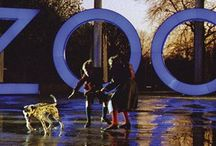 A Zed and Two Noughts by Peter Greenaway
