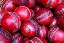 #Cricket Madness!