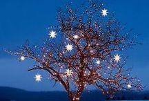 Blauw Kerst
