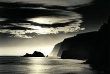 Black & White Nature / Photo Art