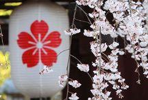 I❤️NIHON 日本 / Amo tutto ciò ke riguarda il Giappone
