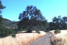 Ventura County / Beautiful Ventura County and its bounty