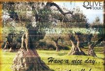 Beautiful Olive Groves & Mills / Olive groves all over the world and places that an olive oil fan must see...