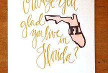 My beautiful FLORIDA / Florida in a nutshell...wouldn't change it for the world!