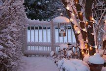 WinterDreamHouse