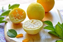 Citrus / by Shawna's favorites