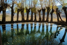 Reflections / Photographie of reflections