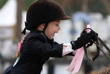 Equestrian and Riding Sport / Photographie of sport horses