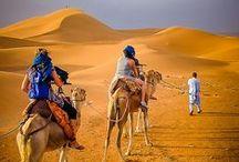 Desert: Travels to Remember  I  My Desert Love