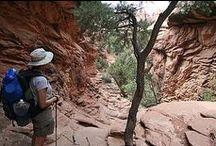 Big Bend: Hiking ♥ Camping