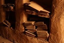 My Texas ♥ Desert Library