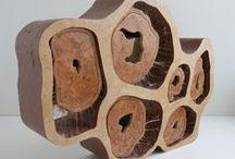 Projet de Diplôme OAK CELL / Mobilier de milieu accessible des deux côtés poccédant trois tiroirs et six portes. Ces formes sont tirés de la vision du bois à l'échelle microscopique, c'est une représentation de l'ADN du chêne.