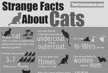 = ^ . . ^ = CATS - Facts