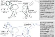 = ^ . . ^ = CATS - How To Draw