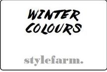 1. Winter Colours / Colours of the Seasonal tone: WINTER