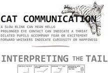= ^ . . ^ = CATS - Communication