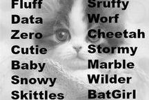 = ^ . . ^ = CATS - Names
