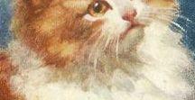 = ^ . . ^ = CATS - Rosa Bebb