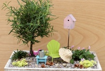 home - backyard / gardens, greens, and other backyard things / by Sylvia
