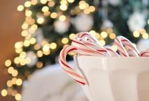 Ho-Ho-Holidays / by Elizabeth Raterman