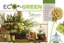 Eco-Green / 1 of 4 Concept Boards for the uBloom Trend Analysis... Featuring Flowers, Foliage and Elements that translate and communicate the Eco-Green Concept... Visit often to see the latest Pins... as this concept evolves! Watch the FREE Video on uBloom.com (http://ubloom.com/blog/2012/11/04/the-eco-green-concept-from-the-ubloom-trend-synthesis/ ) / by J Schwanke