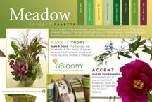 Meadow / An off-shoot of the Eco-Green Trend, Meadow concentrates more fully on the inherent beauty of nature. With this focus on Mother Nature, sustainability and eco-friendly practices are still in play, perhaps more now than ever before!  Order your copy of the NEW uBloom Trend Synthesis today... Introductory Price 50% off cover...   http://ubloom.com/blog/2014/01/05/new-ubloom-trend-synthesis-guide-2014-2015/