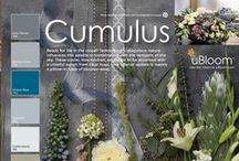 Cumulus / Ready for life in the cloud? Technology's ubiquitous nature influences this palette in combination with the dneizens of the sky. These cooler new neutrals are meant to be accented with a colorful bunch from clear hues. Your interior update is merely a pillow- or vase of blooms- away!