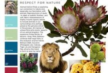 Animal Instinct- Respect for Nature / Get your FREE Trend Report www.uBloom.com/Trends2016 Animal instinct explors our connection to nature & fascination with animals. Reproductions of skulls in sleek realistic finishes -soft fabric interpretations of trophy mounts signal a desire to include animals in our surroundings. Unique flora echo exotic aspects of our animal kingdom. The Protea family continues to reign in this evolution. Bishop's Balls, Eucomis, Celosia, Tiger Lily, Kangaroo Paws all echo the trend in form or name.