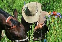 Dude Ranch Jobs and Employment / Dude Ranches hire seasonal and year-round employees.  Jobs include kitchen staff, wait staff, house keeping, maintenance, fishing guides, kids program leaders, wranglers, office staff, and bartenders.