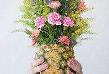 // TADAM! Plants + Flowers //