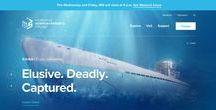 Siti Web (BLU) / Una collezione di #template per #pagineweb di colore #blu