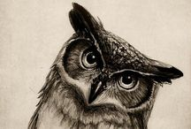 Art - Pen & Ink / Black & White Illustration / Dramatic Art in Black and White / by Catherine Thomas
