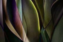 Color & Surface / Patterns, surfaces et.