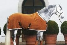 The Sporting Life- Equestrian Style