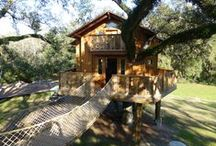 Treehouses / Innovative ideas in treehouse design that inspire us.  / by Davidson Communities