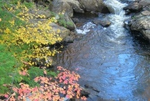 Fall in NH / Fall scenes in New Hampshire