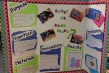 Science in the Primary Classroom