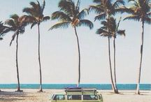 Inspiration - Palmtrees and Beaches