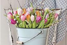 Easter time / Pääsiäisen aikaan. Pajunkissoja, narsisseja ja helmililjoja. Pupuja, karitsoja.