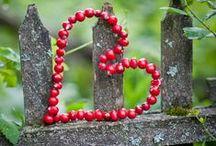 <3 / heart shape