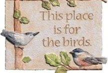 BIRDS / birds from all over the world / by Deborah Fowler-Kyle