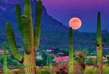 Scottsdale Arizona / Great locations in Scottsdale AZ / by GreatRussianGifts.com
