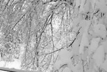 WINTER WONDERLAND / THE BEAUTY OF WINTER, THE SNOW, SNOWMEN IF IT'S WINTER IT SHOULD BE HERE!  IF YOU WOULD LIKE TO PIN TO THIS BOARD, LET ME KNOW!!